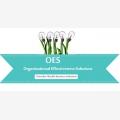 Organisational Effectiveness Solutions - Logo