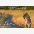 Safari Lodge South Africa | The Royal Madikwe - Logo