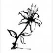 Paintless Art (3430)