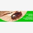 Pretoria Pest Control (7306)