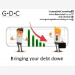 Gauteng Debt Counselling (7326)
