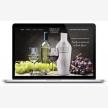 Advertising Solutions Web Design (7500)