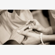 Wedding Photographer Pretoria (7570)