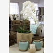 Beach House Interiors & Homeware (7930)