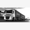 South Port Construction & Logistics (13296)