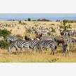 Serengeti Park (20035)