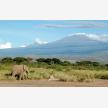 Foot Slopes Tours & Safaris (21077)
