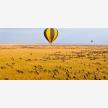 Foot Slopes Tours & Safaris (21078)