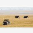 Foot Slopes Tours & Safaris (21084)