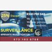 4Private Investigator (21750)