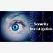 4Private Investigator (21753)