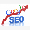 Search Engine Optimization Agency (22719)