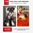 Bone with a bow dog grooming parlour  (24457)