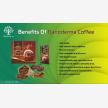 Reishi /Ganoderma Mushroom with Whealthy Life (28258)