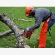 Wilsac Tree Fellers 0738088293 (30198)
