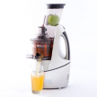 Juicers South Africa (30203)
