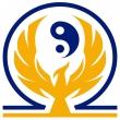 StormPhoenix - Logo