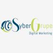 SyberGrupe (Pty) Ltd - Logo