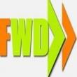 Flawless Web Design - Logo