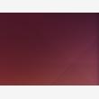 Neon-Design - Logo