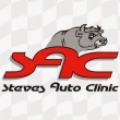 Steves Auto CLinic - Logo