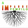 Impande Yempilo Trading & Projects - Logo