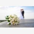 Wedding Photographer Pretoria - Logo