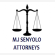 Attorneys in Tzaneen - Logo