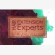 Hair Extension Experts - Pretoria - Logo