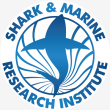 Shark Cage Dive - Logo