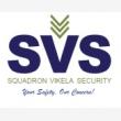 Squadron Vikela Security Services - Logo