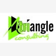 Triangle Consulting - Logo