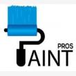 Paint Pros  - Logo