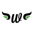 Winggirl Media - Logo
