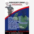 Dozen Security - Logo