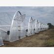 Greenhouse Mpumalanga 0738088293 - Logo