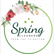 The Spring Cleaners  - Logo