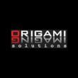Origami Imaging Solutions - Logo