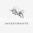 Silverline Investments - Logo