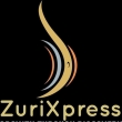 ZuriXpress & Dark Matter Consulting  - Logo