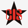CIS Investigations - Logo