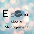 E Social Media Management - Logo