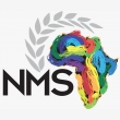 Natus Mining Solutions Africa  - Logo