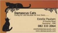 Damascus Cats - Logo