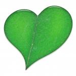 Organica Shop Online - Logo