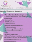 Business Consultancy and Advisory - Logo