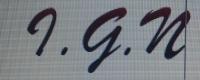 I.G.N Bookkeeping - Logo