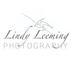 Lindy Leeming Photography - Logo