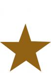modern star trading enterprise - Logo