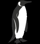 Cape of Good Hope Tours - Logo